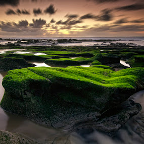 Time goes by but never returns by Hugo Marques - Landscapes Waterscapes