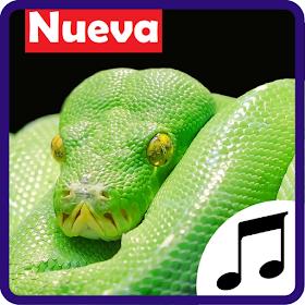 Sonidos de Serpientes, tonos y ringtones