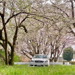 フーガ GY50のカスタム事例画像 tasy            さんの2021年03月30日16:40の投稿