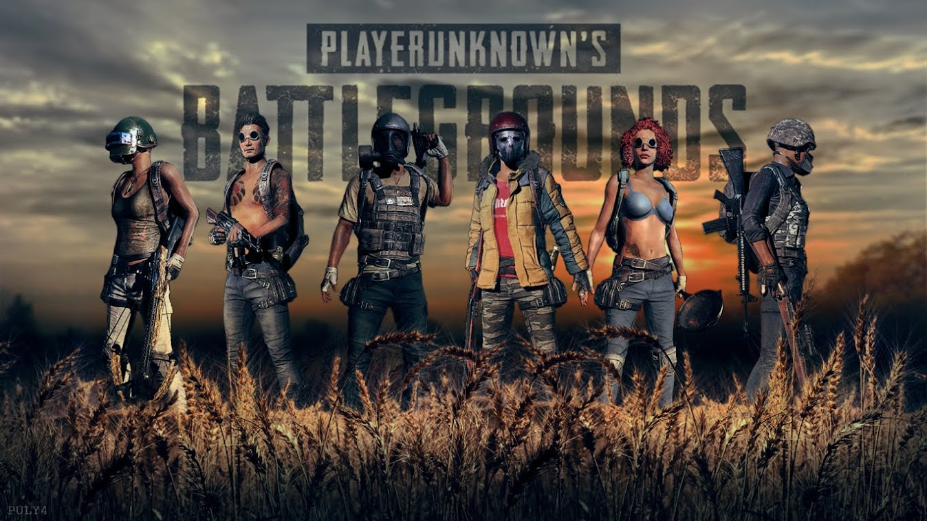 Top 10 The Most Expensive PUBG Skins May 2018