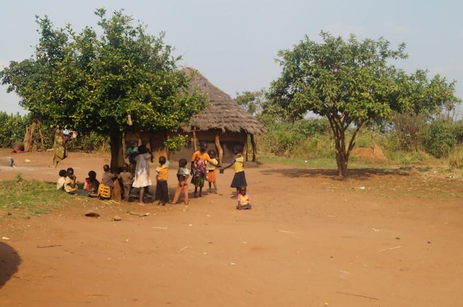 В жёлтой, жаркой Африке, в центральной её части (Руанда, Конго: вулкан, гориллы, пигмеи, Уганда)