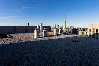 Photo: Passing Afternoon There are times that walk from you like some passing afternoon Summer warmed the open window of her honeymoon And she chose a yard to burn but the ground remembers her Wooden spoons, her children stir her Bougainvillea blooms  #rooftopping #toronto #urbex #urbanexploration #cntower