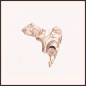 ダイヤの仮面