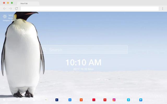 Penguin HD New Tabs Popular Animals Themes