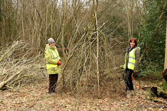 Photo: Gill and Jane beside the tepee they have built to protect the coppiced stools