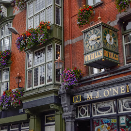 Streets of Dublin by Michael Graham - Buildings & Architecture Architectural Detail ( ireland, dublin, street, flowers, pub,  )