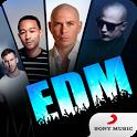 EDM Songs icon