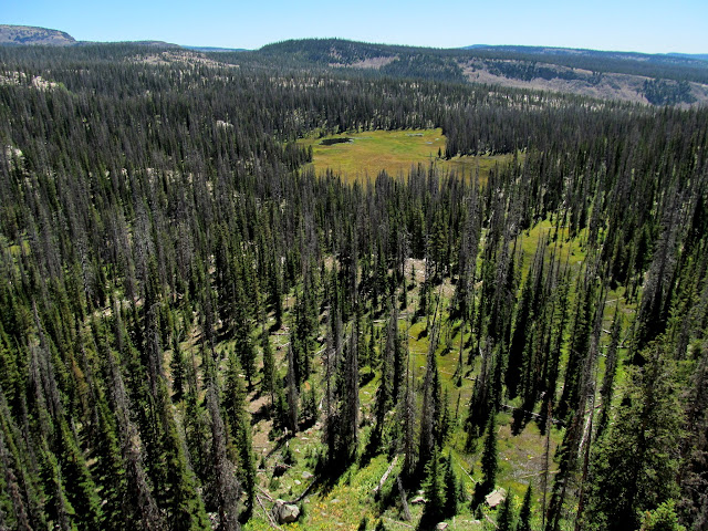 View south down the Boulder Creek drainage