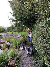 Photo: einmal durch den schönen Garten wandeln ...