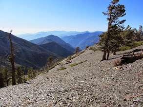 Photo: View west on the North Backbone Trail on the west flank of Dawson Peak toward Fish Fork and Iron Mountain with the Mt. Wilson country in the distant haze