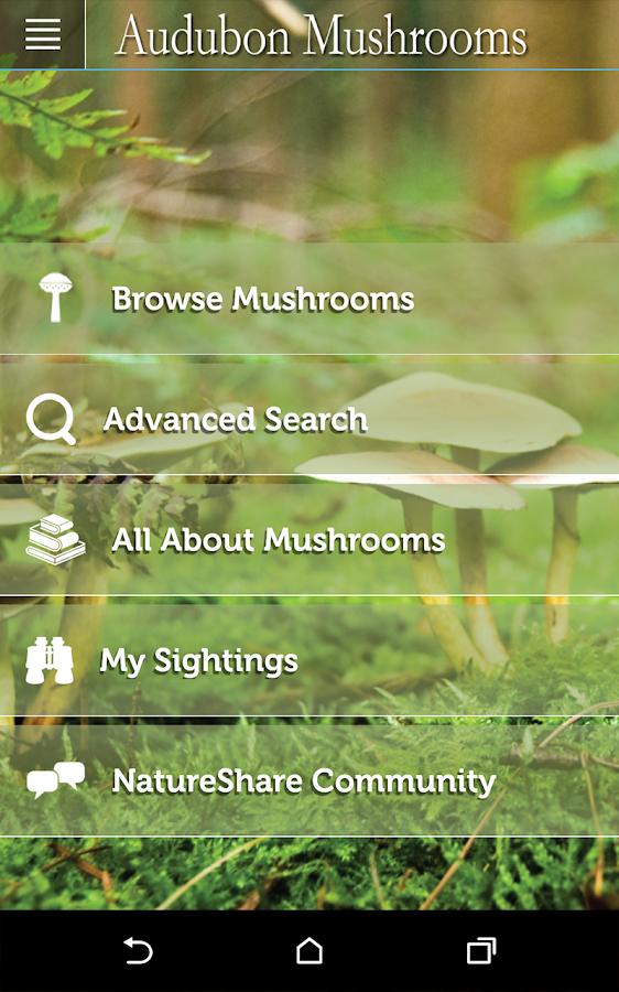 Audubon Mushrooms - screenshot