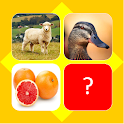 Guess picture name quiz icon