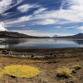 Chungara lake by Tadas Jucys - Landscapes Mountains & Hills ( chile, chungara, lake, travel, altiplano, panorama, hike )