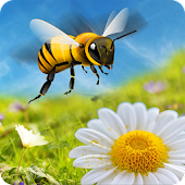 Honey Bee Hive Simulator 2016