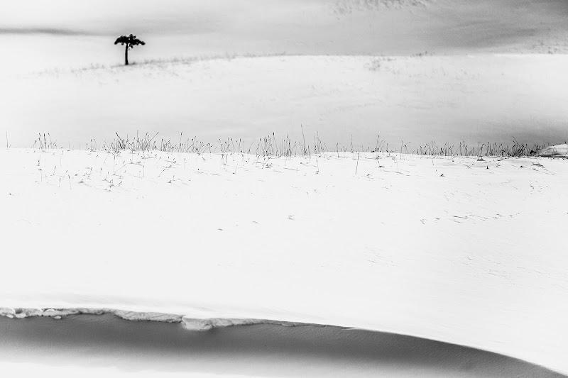 Snow minimal di Tindara