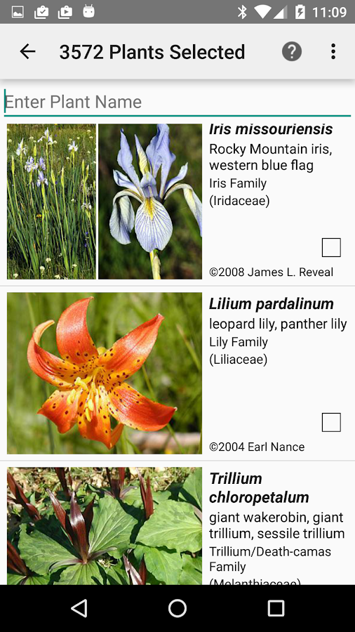 Central California Wildflowers- screenshot