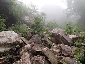岩の多い道に