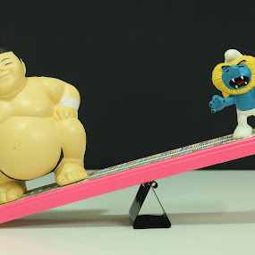 Mr. Sumo by May Iradiel - Novices Only Objects & Still Life