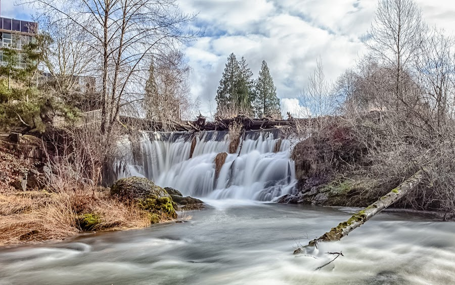 Tumwater Falls by Debbie Slocum Lockwood - Landscapes Waterscapes