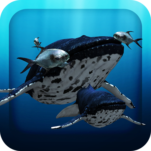 3D Sea Fish Live Wallpaper HD Android APK Download Free By Leafgreen