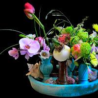 Flowers di