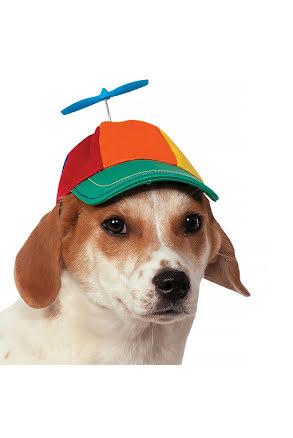 Hunddräkt, propellerkeps