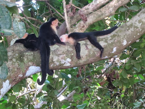 Photo: Just hanging out