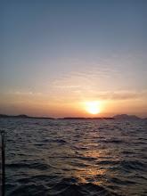Photo: 昨日は、青物大漁でした。 今日もお願いします!