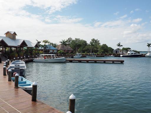 PB180400.JPG - The marina area.