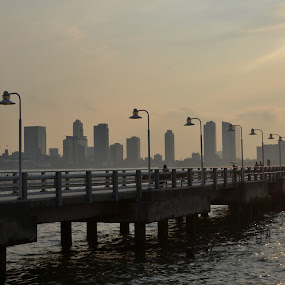 Jersey City' skyline by Valeria Carteri - City,  Street & Park  Skylines ( sunset, battery park, new york, streetlights, jersey city )