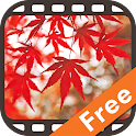 Autumn Scenery in Japan Free icon