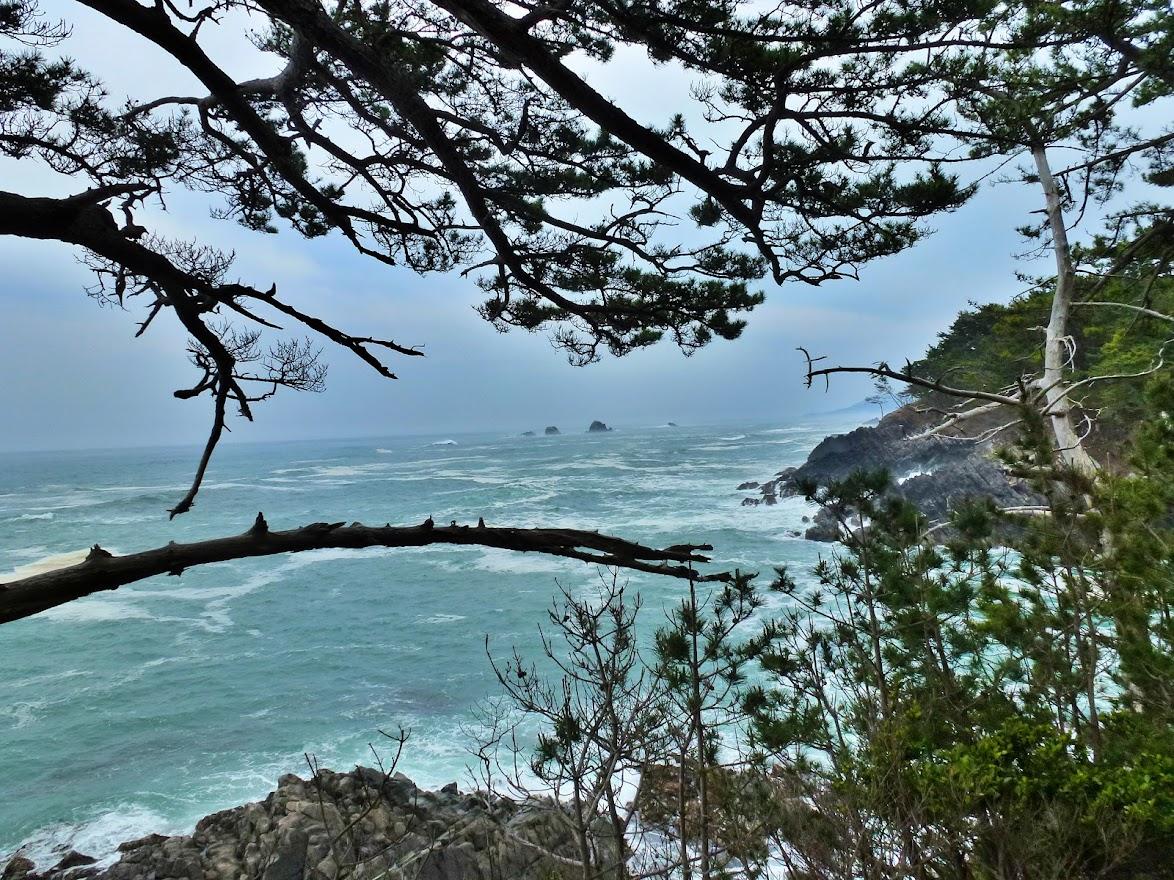 漁り火岬の風景(南側)