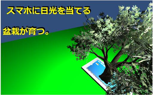 盆栽~GOUYOU!からの挑戦状~