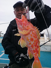 Photo: アヤメちゃん!