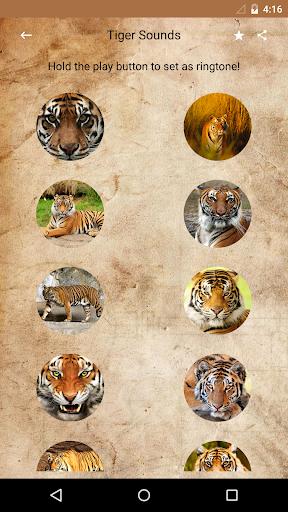 เสียงเสือ