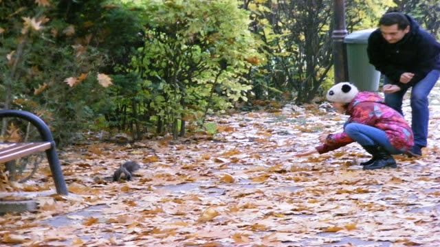Animals in Herastrau Park Bucharest