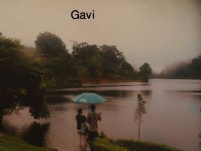 Photo: Gavi