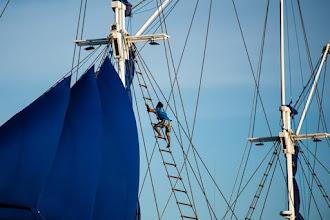 Photo: SAMAMBAIA LIVEABOARD details: sailing operations http://cruisingindonesia.com/liveaboards/samambaia-liveaboard-scuba-diving-indonesia ~ www.CruisingIndonesia.com ~ info@cruisingindonesia.com ~ #liveaboard #scubadiving #diving