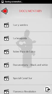 Paco de Lucia - Flamenco Guitarist - náhled