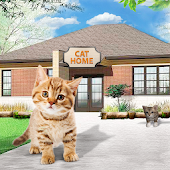 Cat Home : Kitten Daycare & Kitty Care Hotel