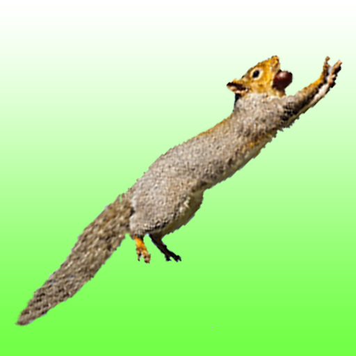 Flying squirrel (game)