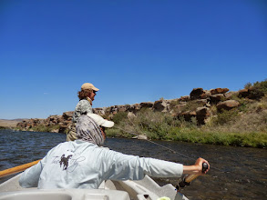 Photo: Streamer fishing on the Madison River- Kelly Galloup Style!