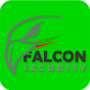 Falcon GPS