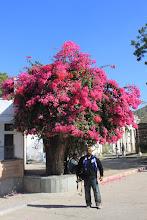 Photo: Ranakpur, a small village en route Udaipur