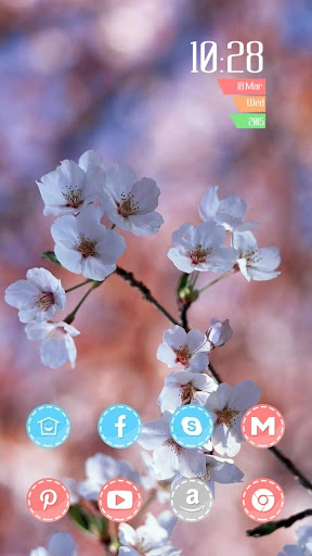 白色鲜花主题