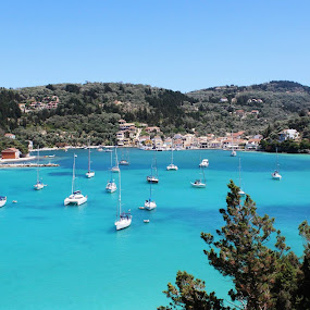 Lakka by Amanda Dacey - Landscapes Travel ( hills, cedar trees, bay olive trees, paxos, boats, greece, harbour, ionian, lakka )