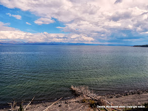 Photo: Yellowstone Lake shore