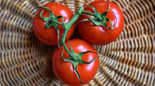 Menú saludable: ensalada de cogollos, tomate y anchoas y arroz a la marinera