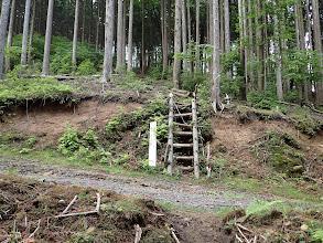 林道を越えて階段を登る