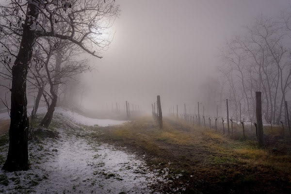 nebbia e ghiaccio di aliscaforotto